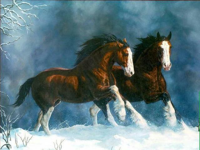 Dafen Oil Painting on canvas -horse012