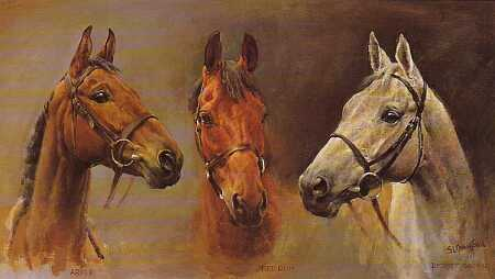 Dafen Oil Painting on canvas -horse017