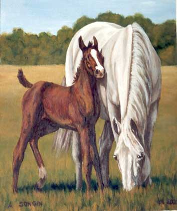 Dafen Oil Painting on canvas -horse024