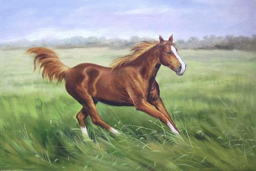 Dafen Oil Painting on canvas -horse037